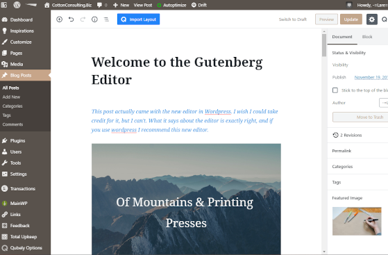 Welcome to the Gutenberg Editor